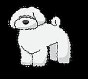 Stáňa Lisnerová chovatelka psů, blogerka